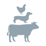 icons of a chicken, a dog, and a cow